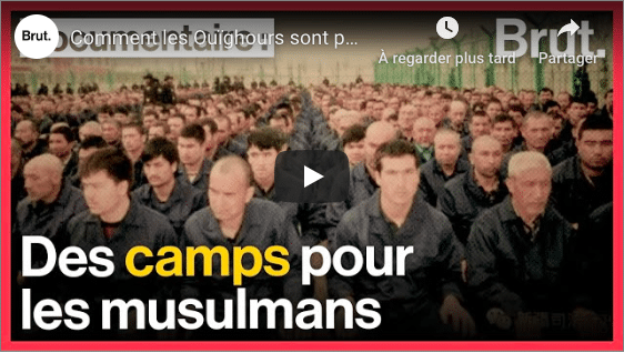 Comment la Chine persécute les Ouïghours... jusqu'en France - VIDEO