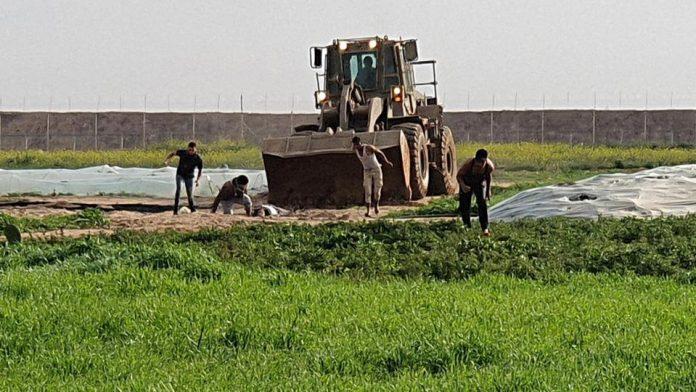 Gaza - Des soldats israéliens profanent le corps d'un Palestinien mort avec un bulldozer - VIDEO