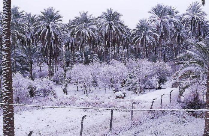Irak - Bagdad recouverte de neige pour la deuxième fois ce siècle