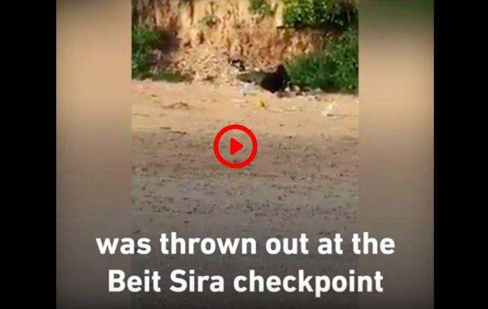 «Ils l'ont jeté comme une poubelle»un Palestinien suspecté de coronavirus a été expulsé d'IsraëlVIDEO