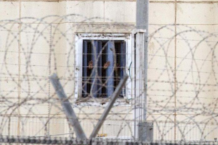 Bâtons de fer, décharges électriques, abus sexuels,… Des femmes palestiniennes sont torturées à mort en Syrie