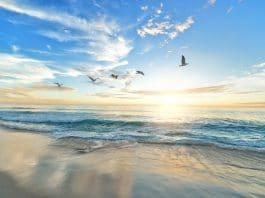 Les 10 miracles que vous devez savoir du Prophète Mohammed ﷺ