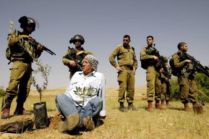 Jérusalem - des soldats israéliens tirent à bout portant sur des Palestiniens qui cultivaient leur terre