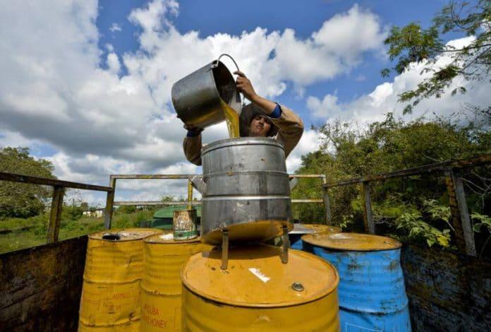 Pourquoi le miel de Cuba est le meilleur du monde - VIDEO (1)