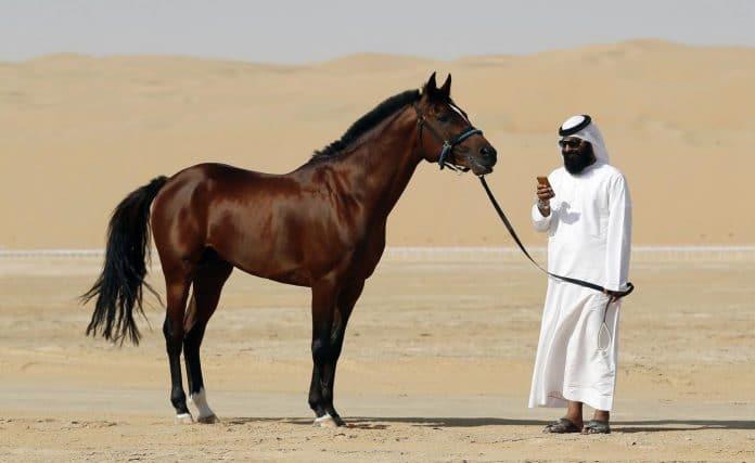 Qatar - une « énorme faille » dans l'application de traçage du coronavirus révèle les informations d'un million d'utilisateurs