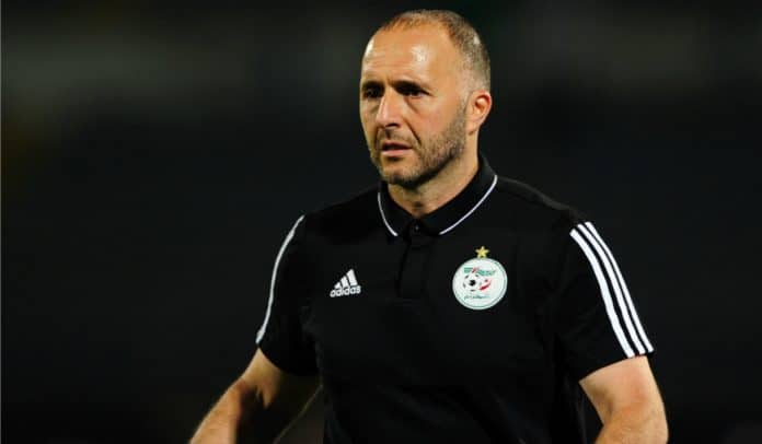 Algérie - Djamel Belmadi sort du silence concernant Luca Zidane et Jonathan Schmid