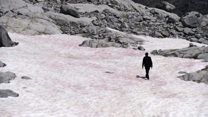 Italie : Il tombe de la neige rose depuis quelques jours