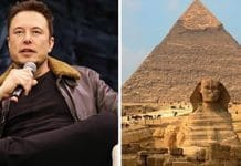 «Les extraterrestres ont construit les pyramides » - l'Egypte répond à Elon Musk