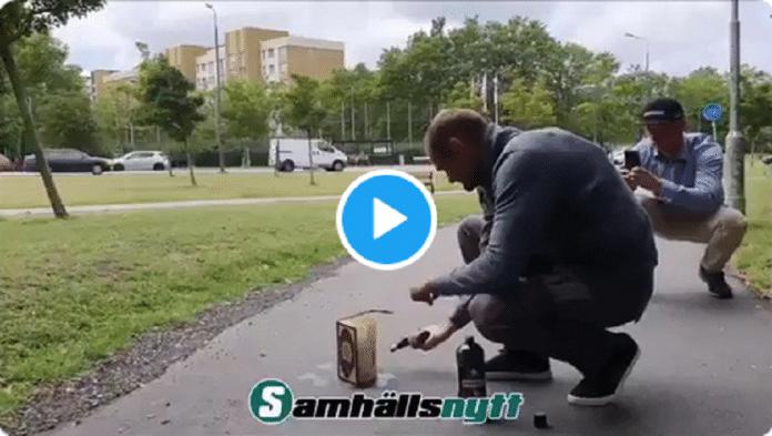 Suède : Un homme brûle le Coran en pleine rue, de violentes émeutes éclatent
