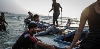 Des pêcheurs de Gaza capturent 73 thons géants en Méditerranée