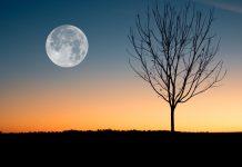 Octobre 2020 - Quels sont les jours blancs de Safar 1442 ?