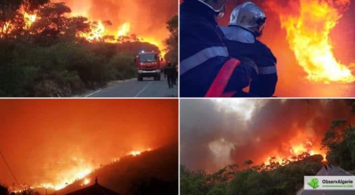 D'immenses incendies ravagent l'Algérie, deux morts et des centaines d'hectares détruits - VIDEO