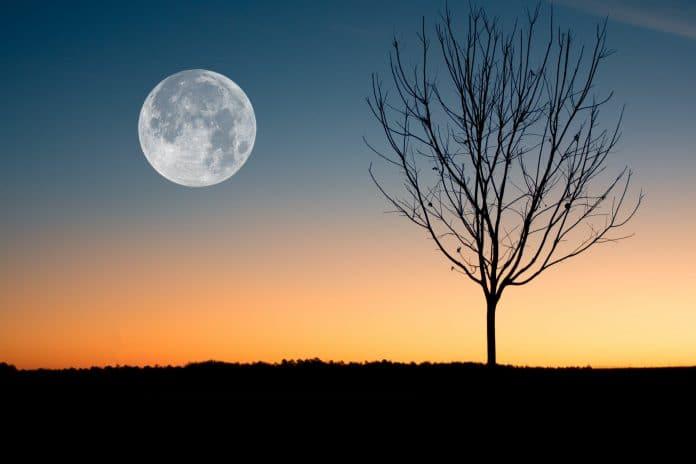 Janvier 2021 - Quels sont les jours blancs de Joumāda at-Thani 1442 ?