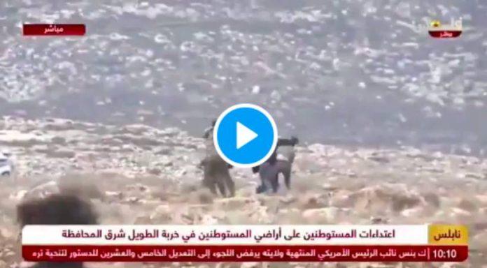 Un gang de colons israéliens lynchent un palestinien de 75 ans et son fils - VIDEO