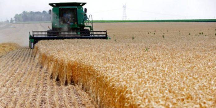 L' Algérie achète un million de tonne de blé en provenance à majorité de la France