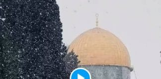 Jérusalem des flocons de neige tombent sur la mosquée al-Aqsa - VIDEO