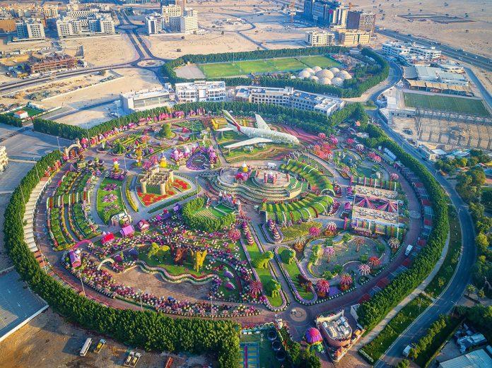La ville de Dubaï tapisse ses allées avec plus de 57 millions de roses