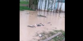 Maroc un cadavre flotte dans les rues après les pluies meurtrières - VIDEO