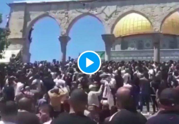 « Où es-tu Erdogan ? » les Palestiniens appellent la Turquie à Jérusalem - VIDEO