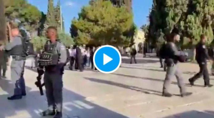 Escortés par la police israélienne, des colons juifs pénètrent dans l'enceinte d'Al-Aqsa - VIDEO