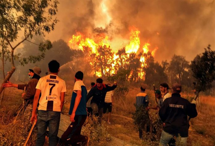 L'Algérie observe un jour de deuil après près de 70 morts dans des incendies criminels
