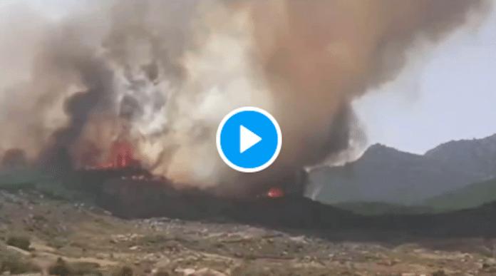 Maroc plus de 700 hectares brulés par des incendies à Chefchaouen - VIDEO